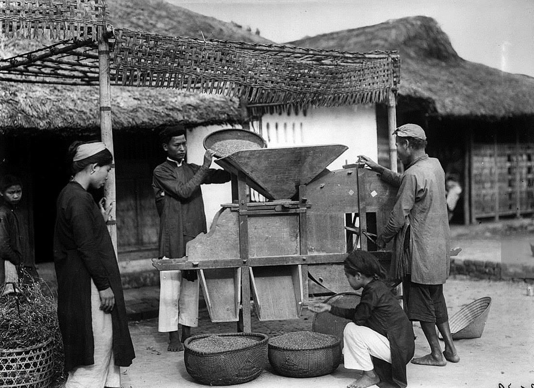 Rê lúa - Huế 1929