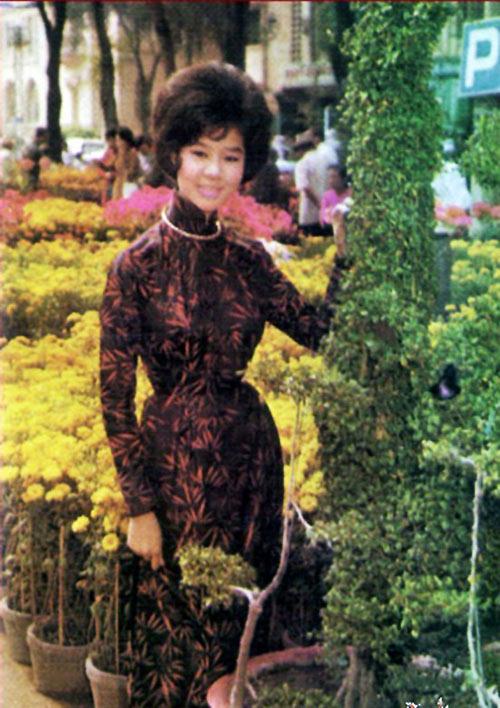 Bông hồng Tết Saigon